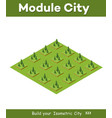 isometric 3d trees forest vector image vector image