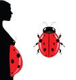 pregnant woman with belly and ladybug vector image