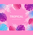 summer tropical design for banner poster card vector image