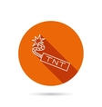 TNT dynamite icon Bomb explosion sign vector image vector image