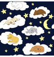 Cute Pets Night sky background vector image