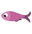 a purple fish or color vector image vector image