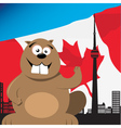 Canadian beaver vector image vector image