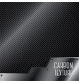 carbon textured background with metal plate vector image
