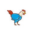 Chicken Rooster Side Cartoon vector image vector image