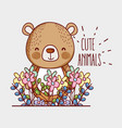cute bear doodle cartoon vector image