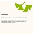 Ginkgo biloba stylizes leaves vector image