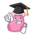 graduation sock character cartoon style vector image