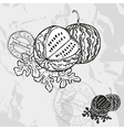Hand drawn decorative watermelons vector image vector image
