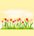 yellow nature banner vector image vector image