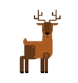Carton wild deer animal flat vector image vector image