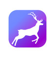 deer flat icon with long shadow pictogram vector image vector image