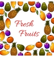 Fresh tropical fruits poster vector image vector image