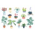 house plants home decor set vector image vector image