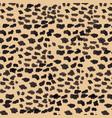 seamless pattern cougar puma panther skin vector image vector image