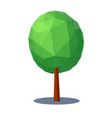 tree low poly style design element vector image