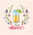 viva mexico colorful poster with tequila glass vector image vector image