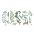 bunch leaves for design linear handmade vector image vector image