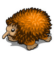 cartoon echidna isolated on white background vector image vector image