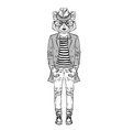 fashion raccoon vector image