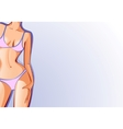 female body swimsuit vector image