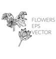 flower hand drawn set vector image vector image