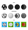 Isolated object of sport and ball sign set of