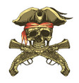 pirate skull and vintage pistols vector image vector image