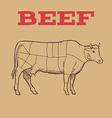 Scheme of Beef cuts vector image vector image