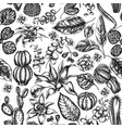 seamless pattern with black and white ficus vector image vector image