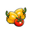 whole ripe red tomato and two yellow bell peppers vector image vector image