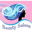 Woman Beauty Salon vector image vector image