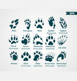 animals footprints vector image