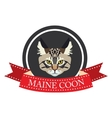 flat icon pedigreed cat maine coon vector image vector image