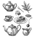 ink hand drawn sketch style tea set vector image