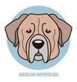 portrait of anatolian shepherd dog vector image vector image