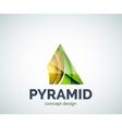 Pyramid logo business branding icon vector image