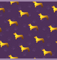 seamless pattern with yellow gold dogs breed vector image vector image