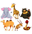 six different types of wild animals vector image vector image