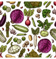 vegetables seamless pattern background vector image vector image
