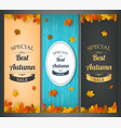 autumn banners set autumn sale background with vector image vector image