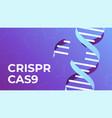 crispr cas9 dna gene editing tool genes vector image vector image