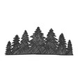 drawn landscape pinery coniferous forest vector image