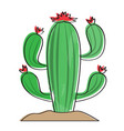 isolated retro cactus icon vector image