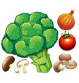 Many fresh vegetables on white vector image vector image