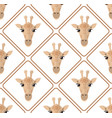seamless pattern with giraffes rhombuses on white vector image vector image