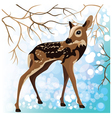 Young deer in a winter forest vector image vector image