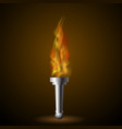 burning torch with fire flame vector image