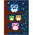 owl family design vector image