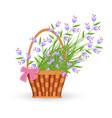blue little wild flowers in wicker basket with vector image